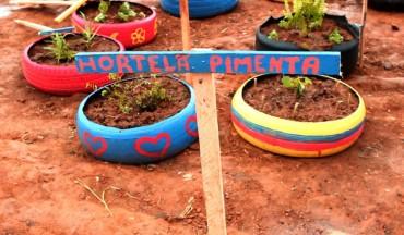 FOTO: Criação da Horta Comunitária da 614 de Samambaia